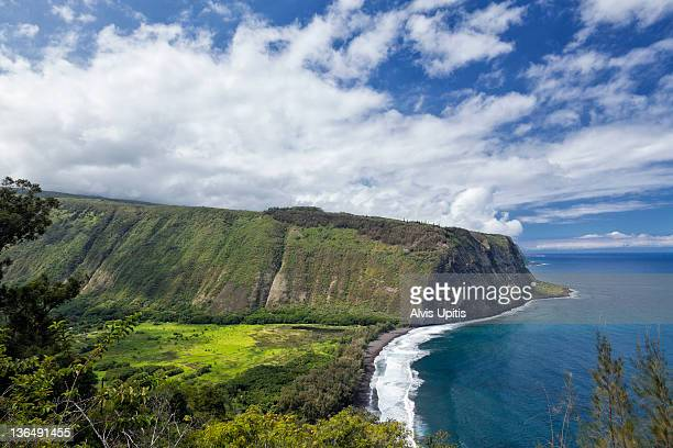 high angle view of waipio valley in hawaii - waipio valley stockfoto's en -beelden