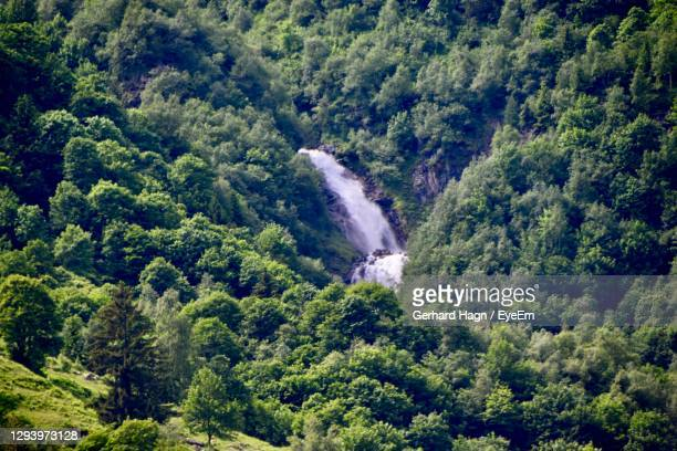 high angle view of waterfall in forest - gerhard hagn stock-fotos und bilder