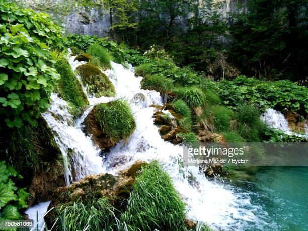 high angle view of waterfall in forest - marijana stock pictures, royalty-free photos & images