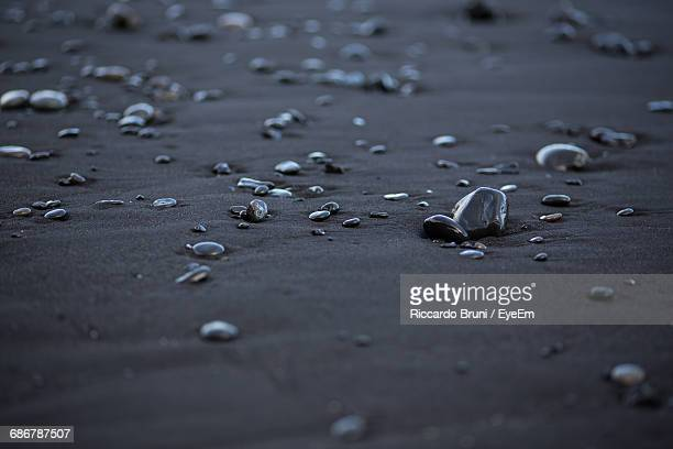 High Angle View Of Wet Pebbles At Beach
