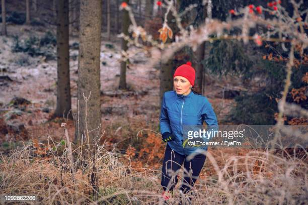 high angle view of woman hiking in forest - val thoermer stock-fotos und bilder