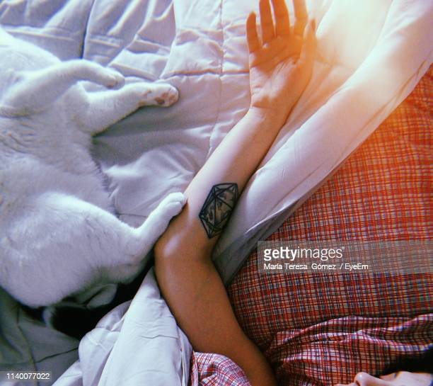 high angle view of woman lying with cat on bed at home - cat family stock photos and pictures