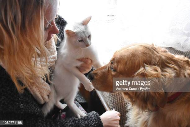 high angle view of woman sitting with cat and dog at home - cat and dog stock pictures, royalty-free photos & images