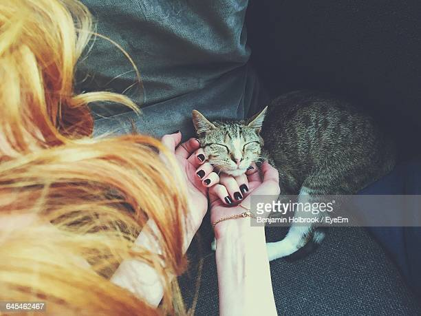 High Angle View Of Woman Stroking Cat In Car