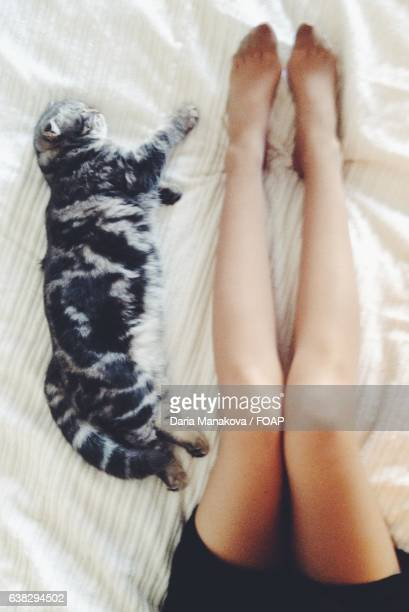 High angle view of woman with cat on bed