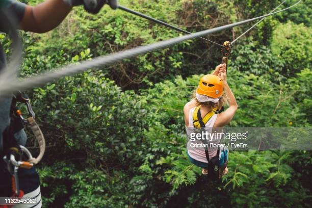 High Angle View Of Woman Ziplining In Forest