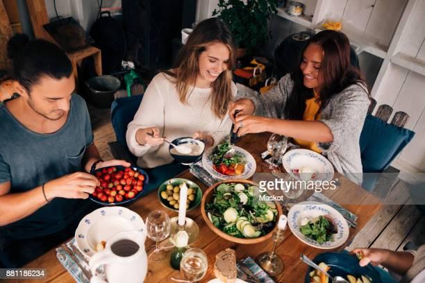 high angle view of women and men having healthy salad in cottage - salat speisen stock-fotos und bilder