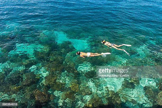 High Angle View Of Women Snorkeling In Sea