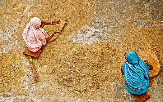 High Angle View Of Women Winnowing Rice - gettyimageskorea