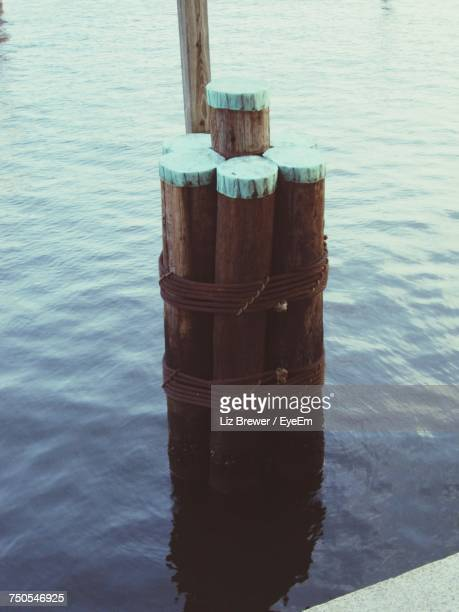 high angle view of wooden post in sea - liz brewer stock photos and pictures