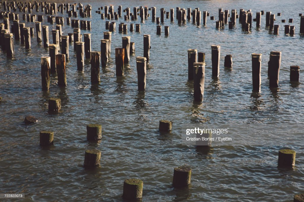 High Angle View Of Wooden Posts In River : Stock-Foto