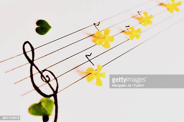 high angle view of yellow flowers on musical note - chiave di violino foto e immagini stock