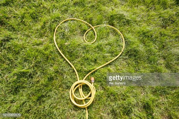 high angle view of yellow garden hose in heart shape - jahreszeit stock-fotos und bilder
