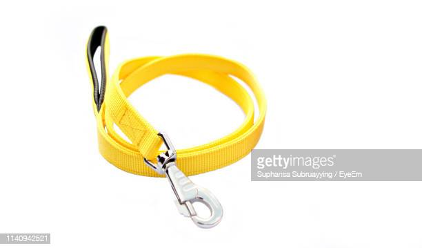 high angle view of yellow pet leash against white background - riem persoonlijk accessoire stockfoto's en -beelden