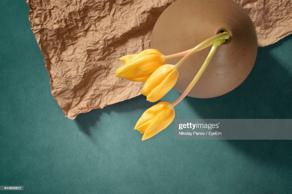 High Angle View Of Yellow Tulips On Table : Stock Photo
