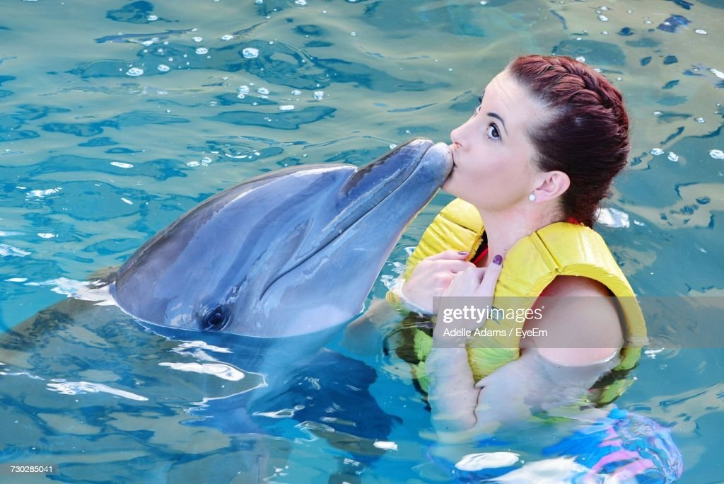 High Angle View Of Young Woman Kissing Dolphin In Sea At Cozumel : Stock Photo