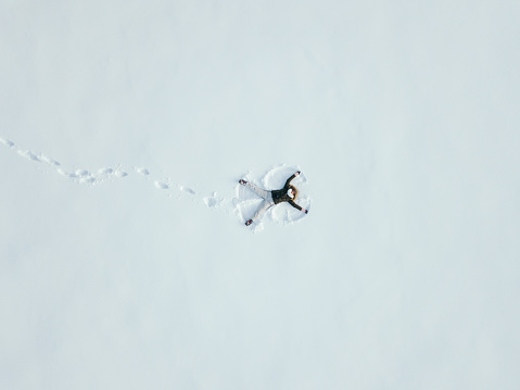 High Angle View Of Young Woman Making Snow Angel - gettyimageskorea