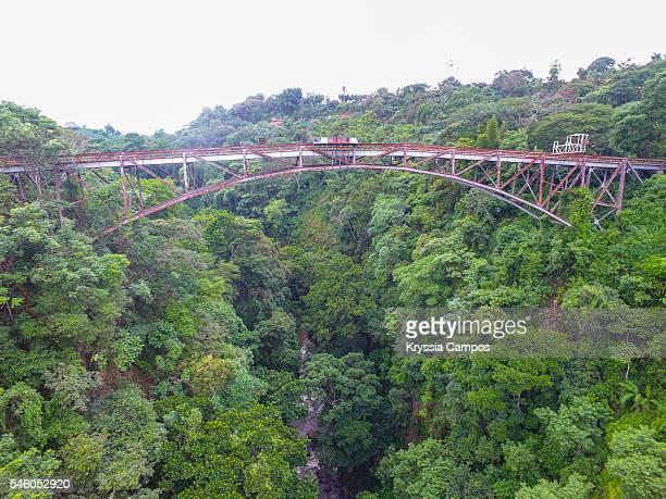 High angle view over bridge and jungle, Costa Rica