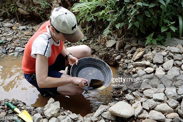 high angled view of a woman panning for gold - gold rush stock photos and pictures