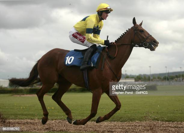 High Carol ridden by Nick Scholfield going to post for the Rose Lion In Bromyard Novices' Handicap Hurdle