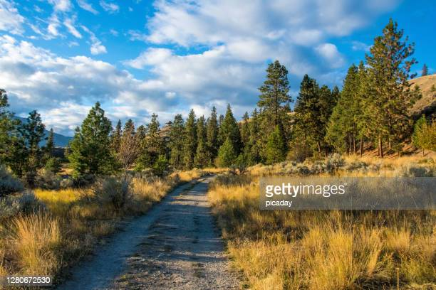 high country gravel road - okanagan valley stock pictures, royalty-free photos & images