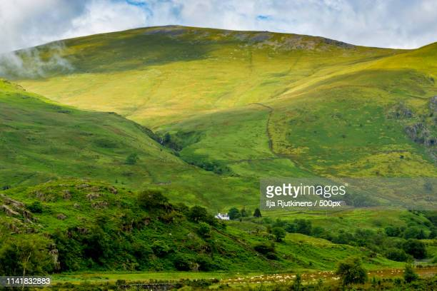 high fields - llandovery stock photos and pictures