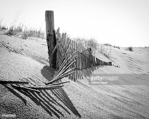 high key dunes scenic dramatic view of sand dunes at the beach - melissa fague stock pictures, royalty-free photos & images