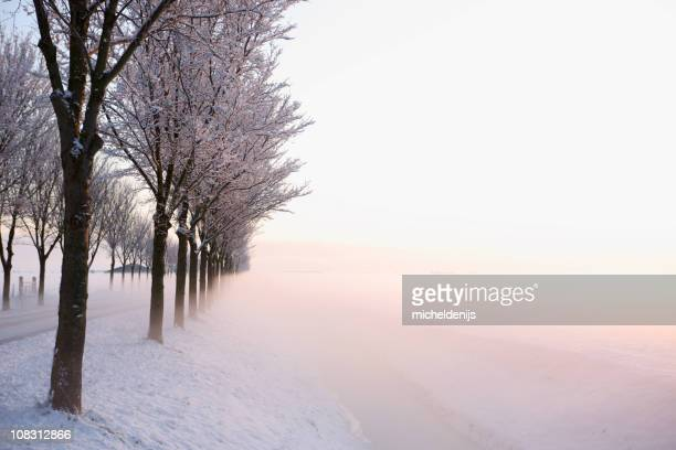 High Key Winter Sunrise