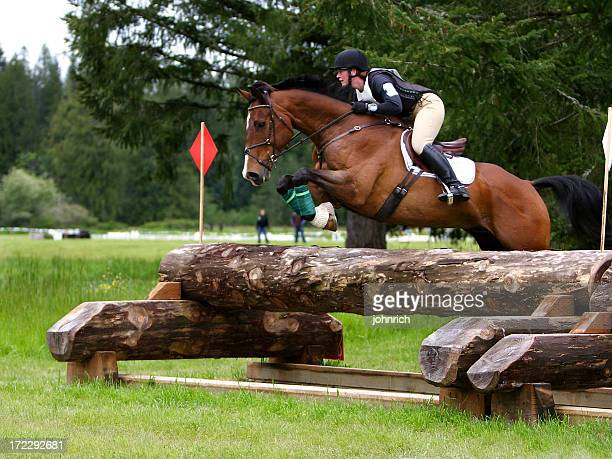 high level cross country - equestrian eventing stock pictures, royalty-free photos & images