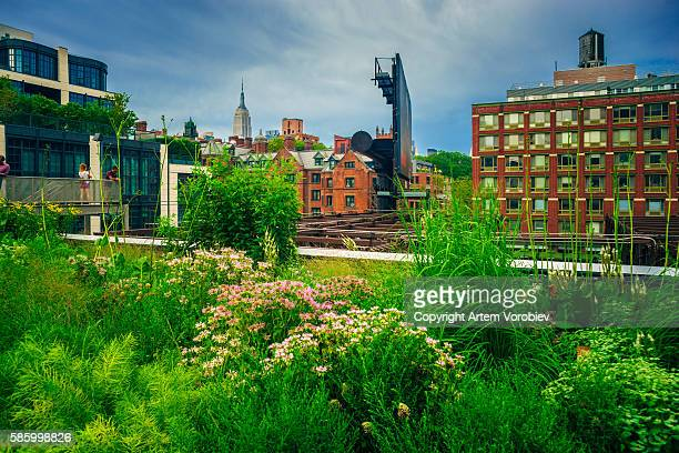 High Line Park in the summer, New York