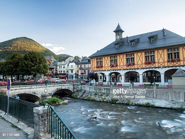 High mountain river running through a small village in the Pyrenees, (Arreau),  France,