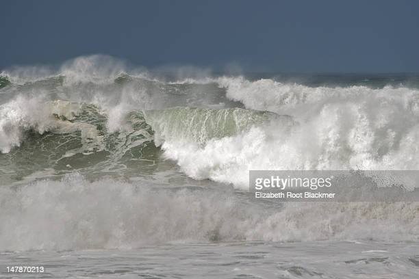 high ocean surf - big basin redwoods state park stock pictures, royalty-free photos & images