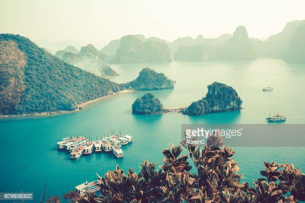 high point of view on old boats cruising around through halong bay - pacific ocean stock pictures, royalty-free photos & images