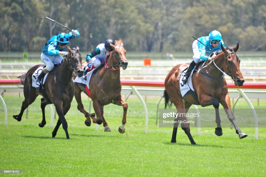 High Ratio ridden by Michael Dee wins the MyPunter.com SV 2YO Maiden Plate at Bendigo Racecourse on December 06, 2017 in Bendigo, Australia.
