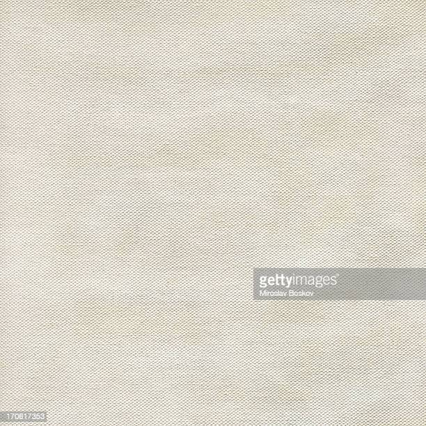 High Resolution Acrylic Primed Cotton Duck Canvas Grunge Sample