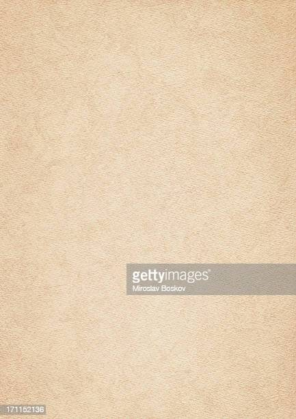 High Resolution Acrylic Primed Watercolor Paper Texture