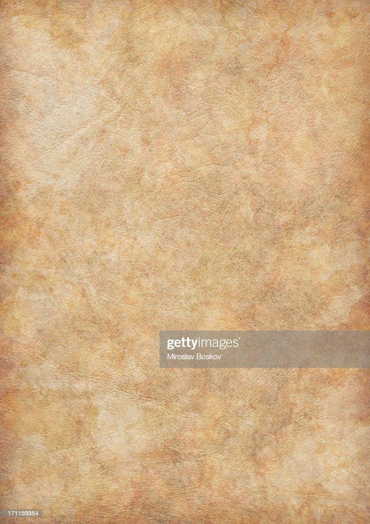High Resolution Ancient Animal Skin Parchment Vignette Grunge Texture : Stock Photo