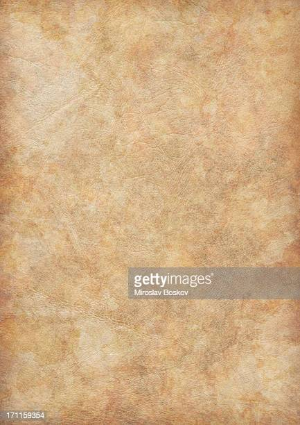 high resolution ancient animal skin parchment vignette grunge texture - mottled skin stock pictures, royalty-free photos & images