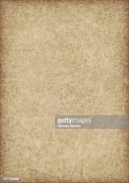 high resolution animal skin antique parchment vignette grunge texture - old parchment background burnt stock photos and pictures