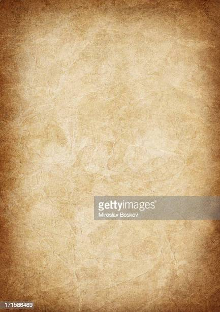 High Resolution Animal Skin Old Parchment Vignetted Grunge Texture