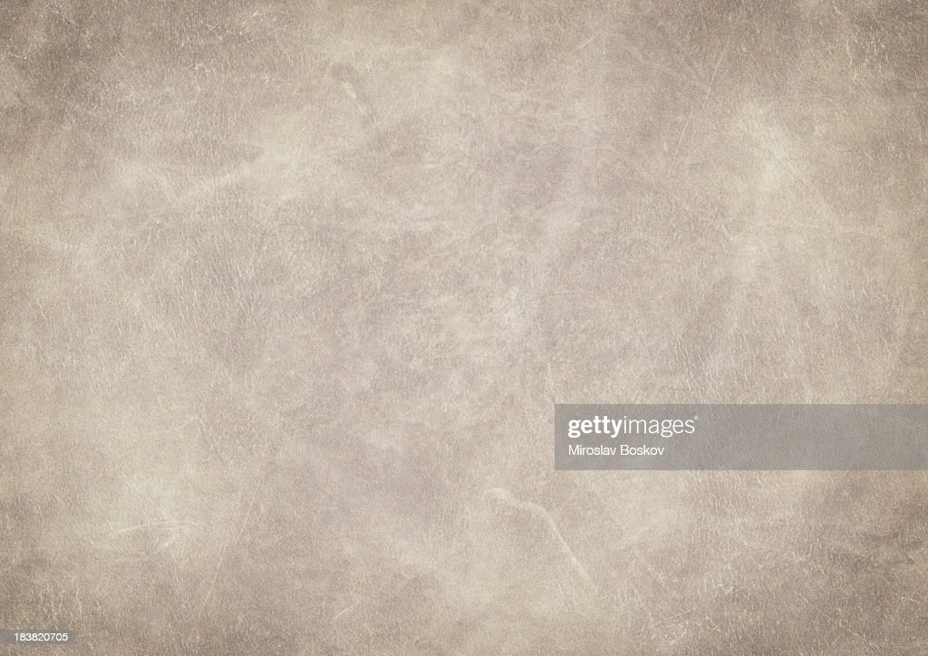 High Resolution Animal Skin Old Parchment Vignetted Grunge Texture : Stock Photo