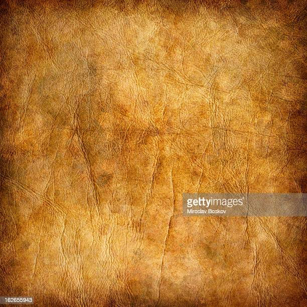 high resolution animal skin parchment mottled vignette grunge texture - old parchment background burnt stock photos and pictures
