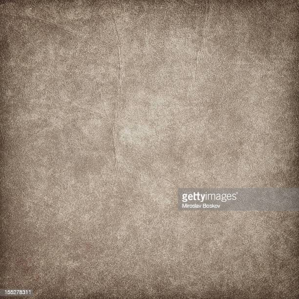 high resolution animal skin parchment vignette grunge texture - pores stock photos and pictures