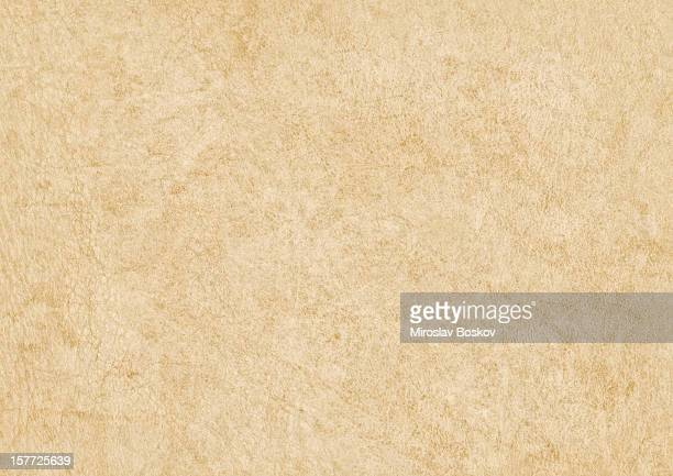 high resolution antique animal skin parchment grunge texture - pore stock pictures, royalty-free photos & images