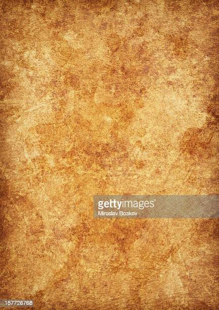 high resolution antique animal skin parchment mottled grunge vignette texture - mottled skin stock pictures, royalty-free photos & images