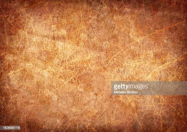 high resolution antique animal skin parchment mottled vignette grunge texture - mottled skin stock pictures, royalty-free photos & images