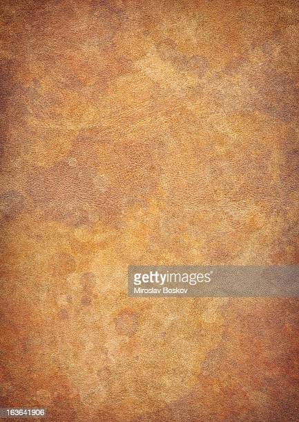 High Resolution Antique Animal Skin Parchment Mottled Vignette Grunge Texture