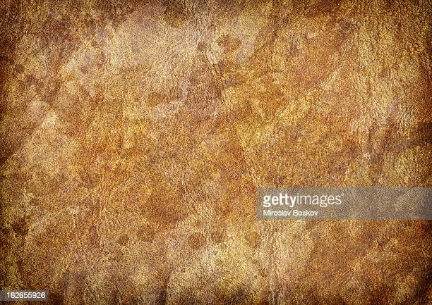 high resolution antique animal skin parchment vignette grunge texture - cowhide stock photos and pictures