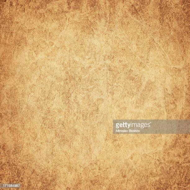 High Resolution Antique Animal Skin Parchment (Vellum) Vignetted Grunge Texture