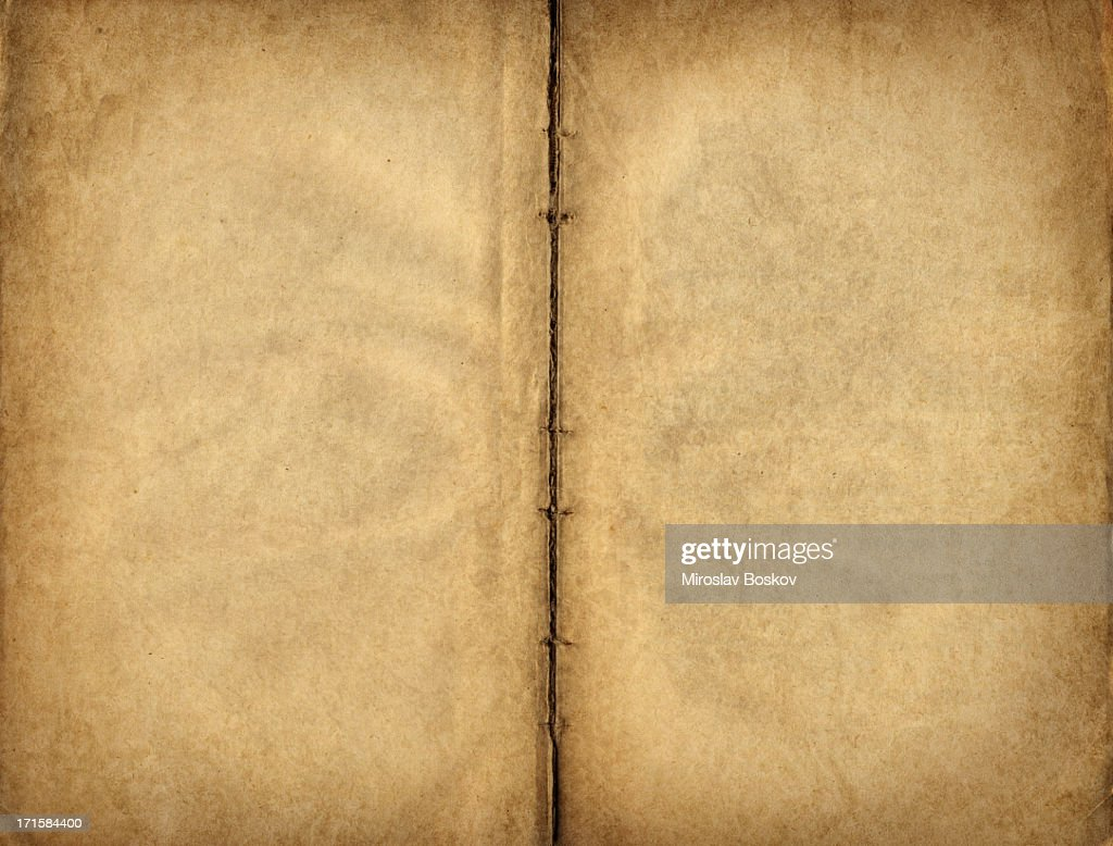 High Resolution Antique Manuscript Blank Parchment Pages : Stock Photo
